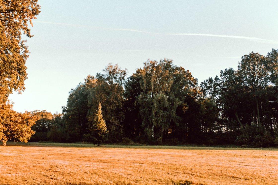 fotograf-slub-slask- 97